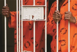 Is minimum sentencing the solution for South Africa's high crime rate?
